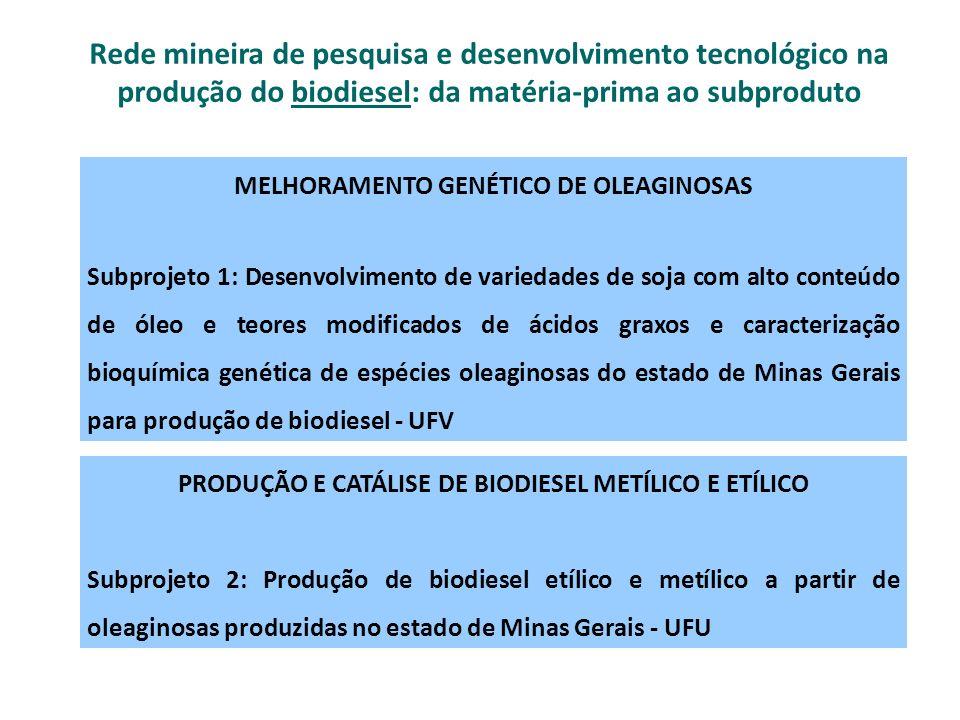 APROVEITAMENTO TECNOLÓGICO DA GLICERINA Subprojeto 3: Novas Rotas para a Conversão da Glicerina (subproduto do biodiesel) em Materiais para Aplicações Tecnológicas – UFMG Subprojeto 4: Obtenção de catalisadores de nióbia e goethita para a clivagem oxidativa de glicerina - UFLA Rede mineira de pesquisa e desenvolvimento tecnológico na produção do biodiesel: da matéria-prima ao subproduto