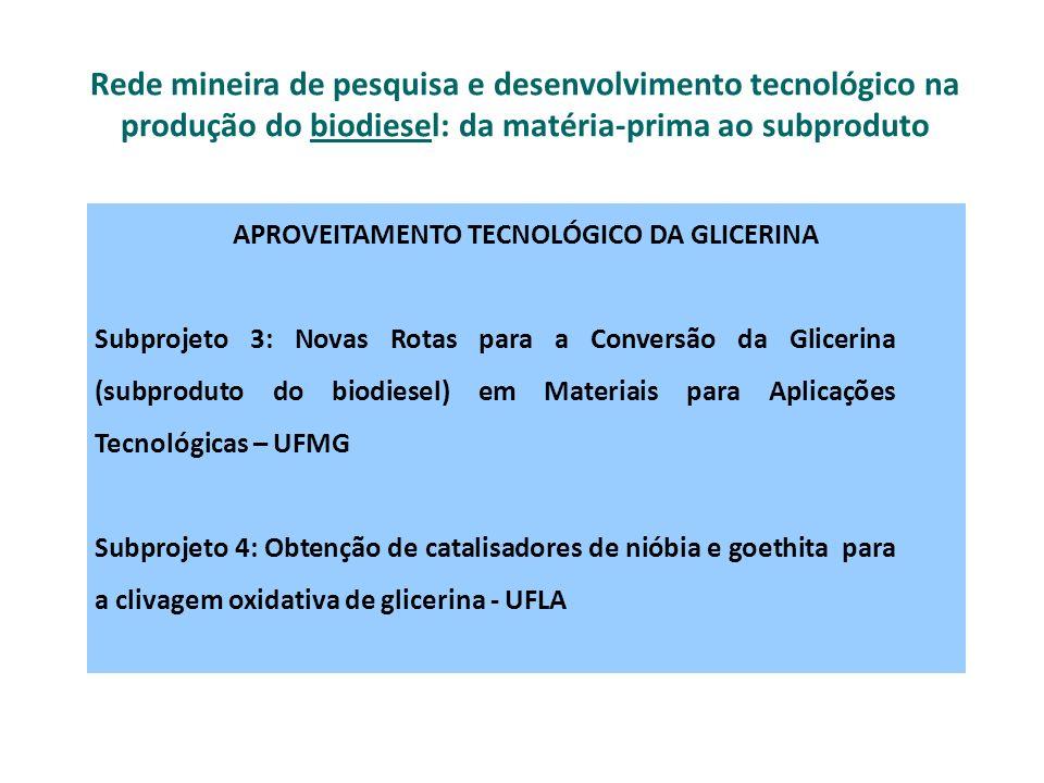 PROGRAMA ESTRATÉGICO DE COLABORAÇÃO EM CIÊNCIA, TECNOLOGIA E FORMAÇÃO SUPERIOR ENTRE A REGIÃO DE PIEMONTE (ITÁLIA) E O ESTADO DE MINAS GERAIS Projeto de colaboração entre a Região de Piemonte e o Estado de Minas Gerais para a produção científica / tecnológica na área de biocombustíveis de segunda geração Programa estratégico entre a Região de Piemonte e o Estado de Minas Gerais: ÁREA BIOENERGIA Coordenadores e gestores do projeto: Região de Piemonte e o Estado de Minas Gerais PROGRAMA ESTRATÉGICO DE COLABORAÇÃO EM CIÊNCIA, TECNOLOGIA E FORMAÇÃO SUPERIOR ENTRE A REGIÃO DE PIEMONTE (ITÁLIA) E O ESTADO DE MINAS GERAIS Projeto de colaboração entre a Região de Piemonte e o Estado de Minas Gerais para a produção científica / tecnológica na área de biocombustíveis de segunda geração Programa estratégico entre a Região de Piemonte e o Estado de Minas Gerais: ÁREA BIOENERGIA Coordenadores e gestores do projeto: Região de Piemonte e o Estado de Minas Gerais