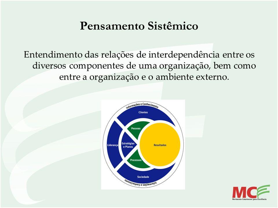 Pensamento Sistêmico Entendimento das relações de interdependência entre os diversos componentes de uma organização, bem como entre a organização e o