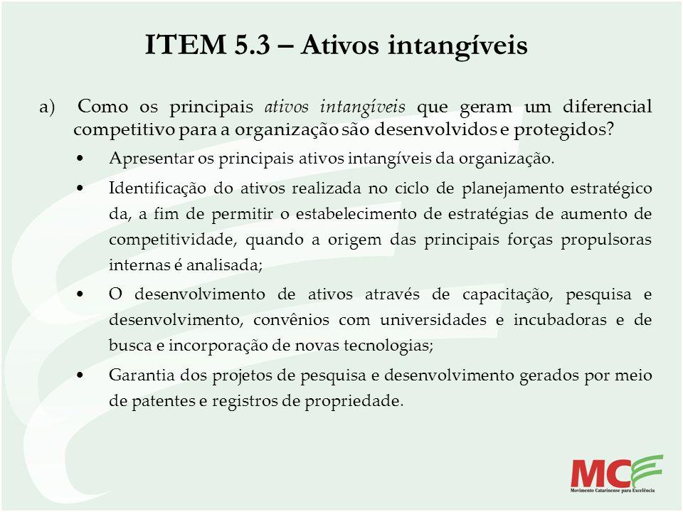 ITEM 5.3 – Ativos intangíveis a) Como os principais ativos intangíveis que geram um diferencial competitivo para a organização são desenvolvidos e pro