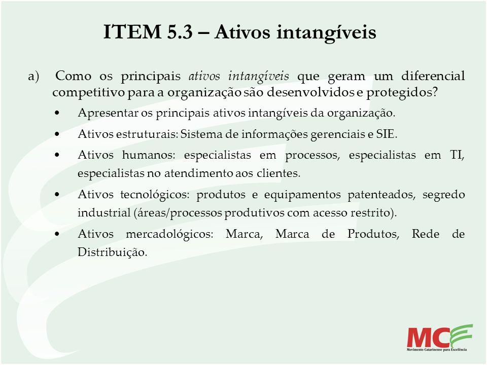 a) Como os principais ativos intangíveis que geram um diferencial competitivo para a organização são desenvolvidos e protegidos? Apresentar os princip