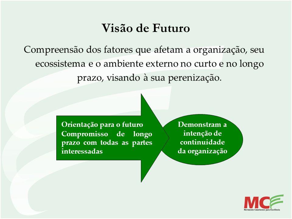 Demonstram a intenção de continuidade da organização Visão de Futuro Compreensão dos fatores que afetam a organização, seu ecossistema e o ambiente ex