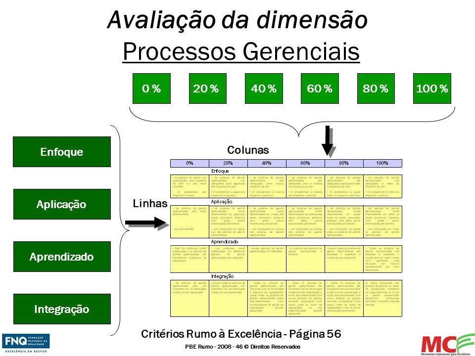 PBE Rumo - 2008 - 46 © Direitos Reservados Avaliação da dimensão Processos Gerenciais Integração Aprendizado Aplicação Enfoque Linhas Colunas 20 %0 %4
