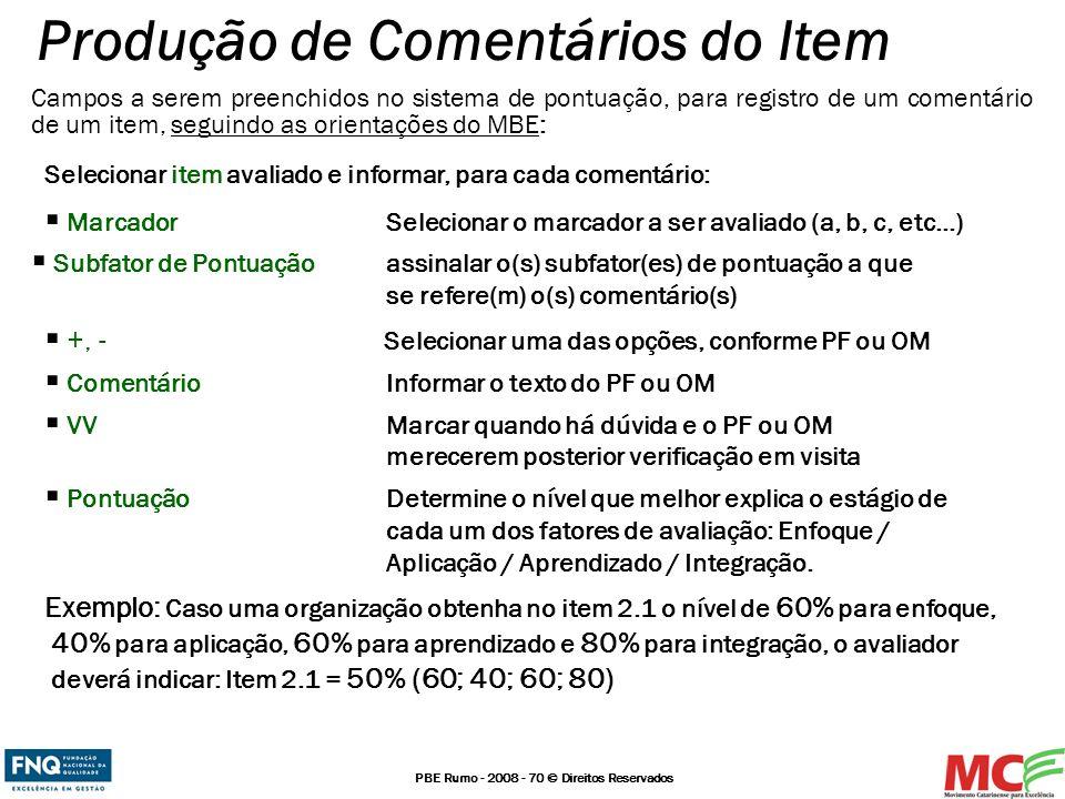 PBE Rumo - 2008 - 70 © Direitos Reservados Campos a serem preenchidos no sistema de pontuação, para registro de um comentário de um item, seguindo as