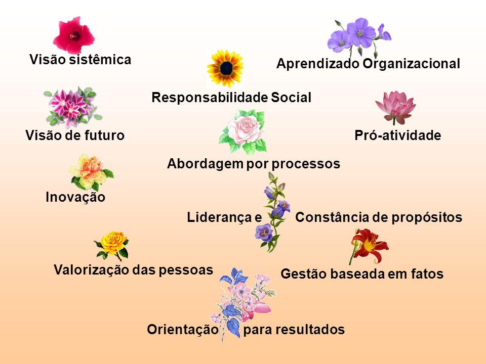 Visão sistêmica Aprendizado Organizacional Pró-atividade Liderança e Constância de propósitos Visão de futuro Responsabilidade Social Gestão baseada e