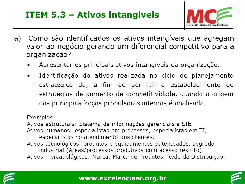 www.excelenciasc.org.br ITEM 5.3 – Ativos intangíveis a) Como são identificados os ativos intangíveis que agregam valor ao negócio gerando um diferenc