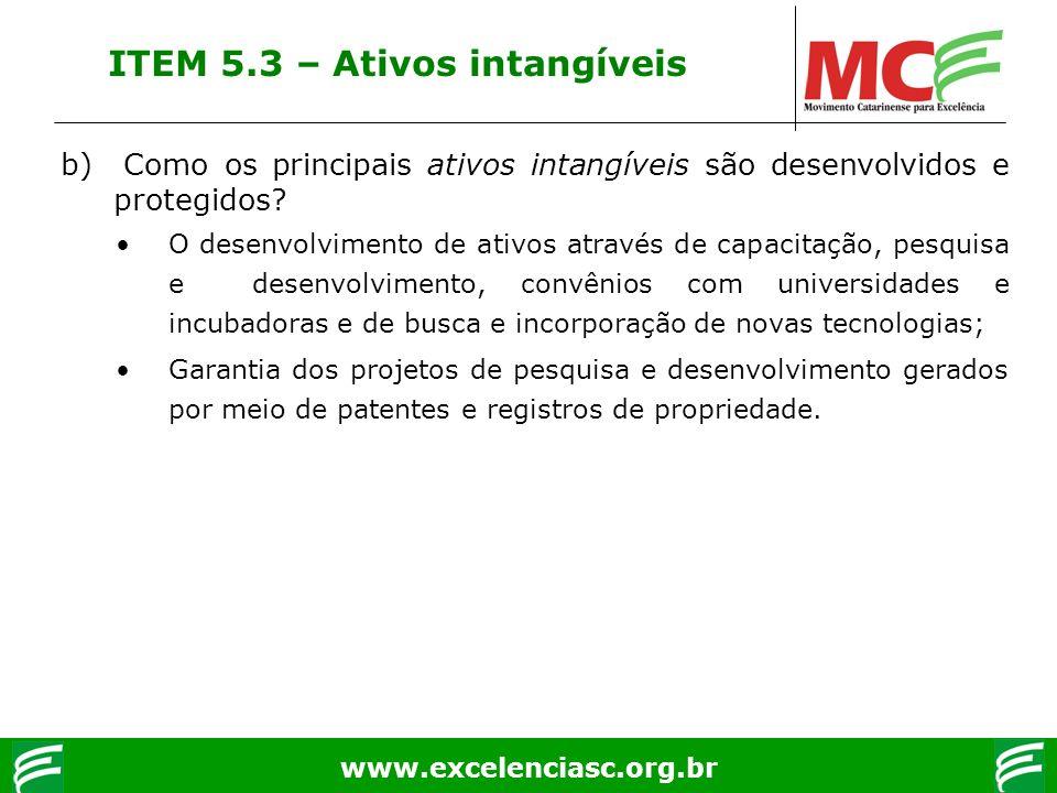 www.excelenciasc.org.br ITEM 5.3 – Ativos intangíveis b) Como os principais ativos intangíveis são desenvolvidos e protegidos? O desenvolvimento de at