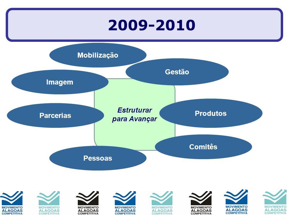 Estruturar para Avançar Imagem Produtos Parcerias Gestão Comitês Pessoas Mobilização 2009-2010
