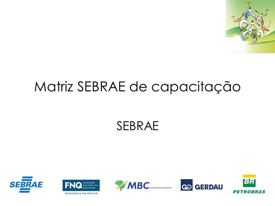 Matriz SEBRAE de capacitação SEBRAE