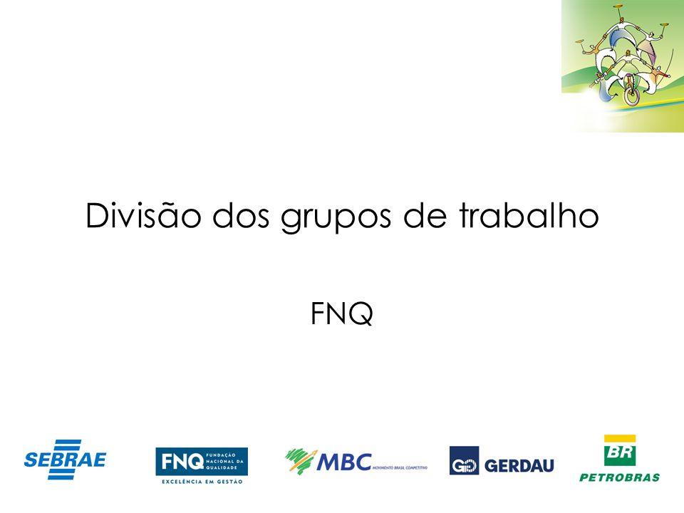 Divisão dos grupos de trabalho FNQ