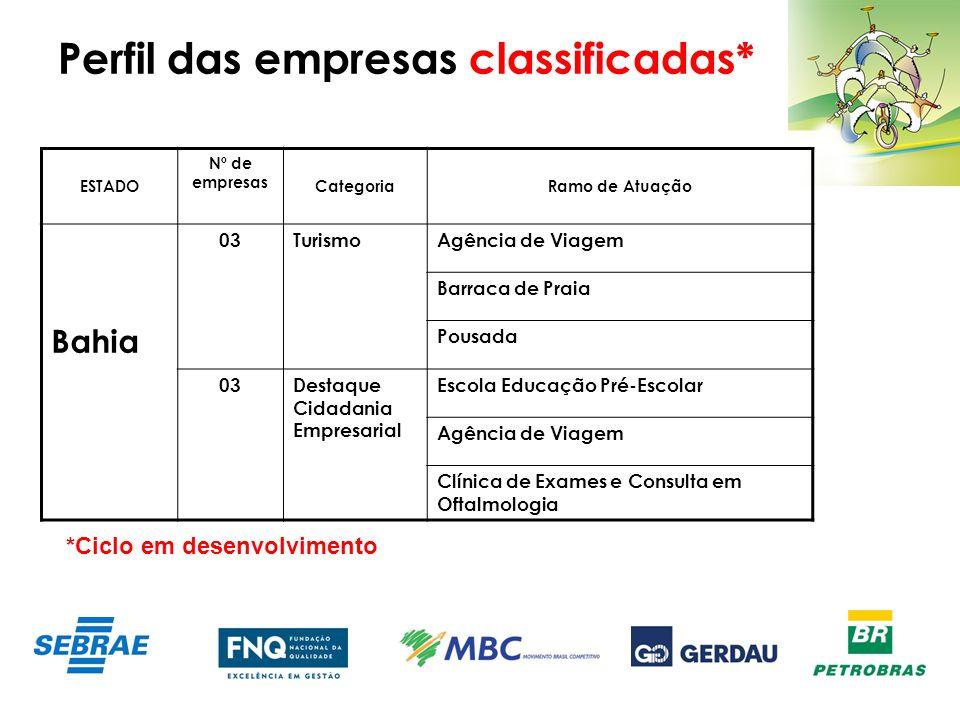 Perfil das empresas classificadas* ESTADO Nº de empresas CategoriaRamo de Atuação Bahia 03TurismoAgência de Viagem Barraca de Praia Pousada 03Destaque