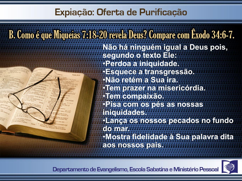 Não há ninguém igual a Deus pois, segundo o texto Ele: Perdoa a iniquidade.