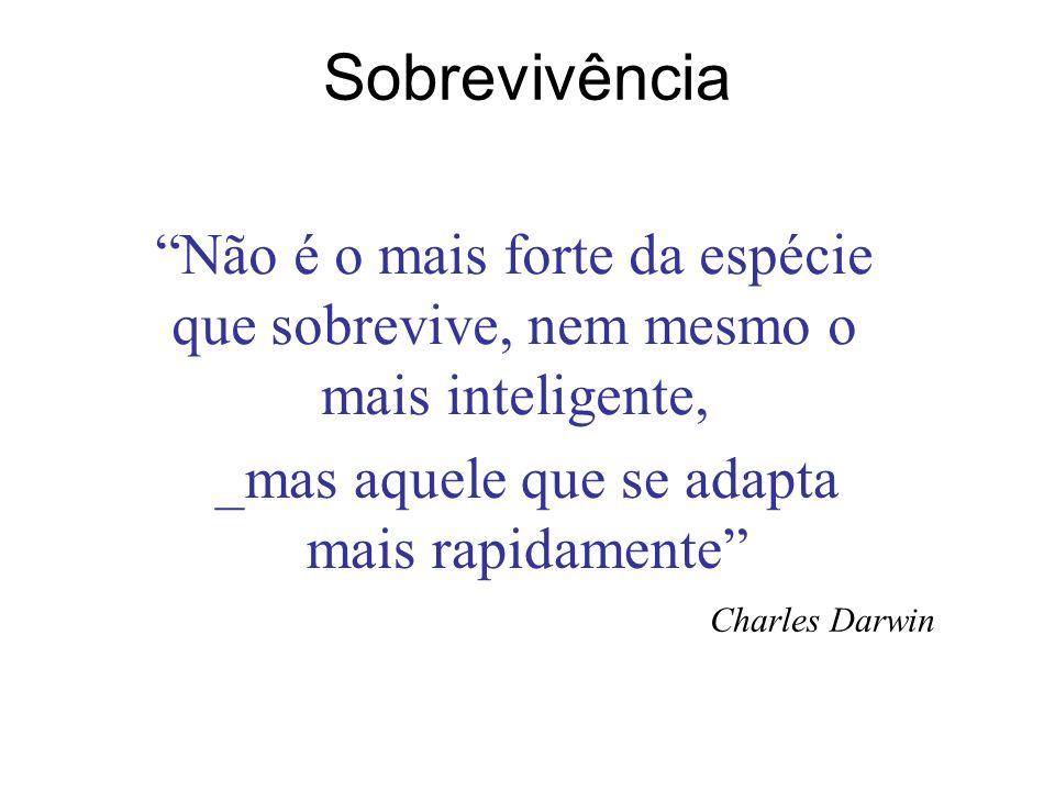 reges.bronzatti@softwares.com.br ( 51-2111-1600) Contato