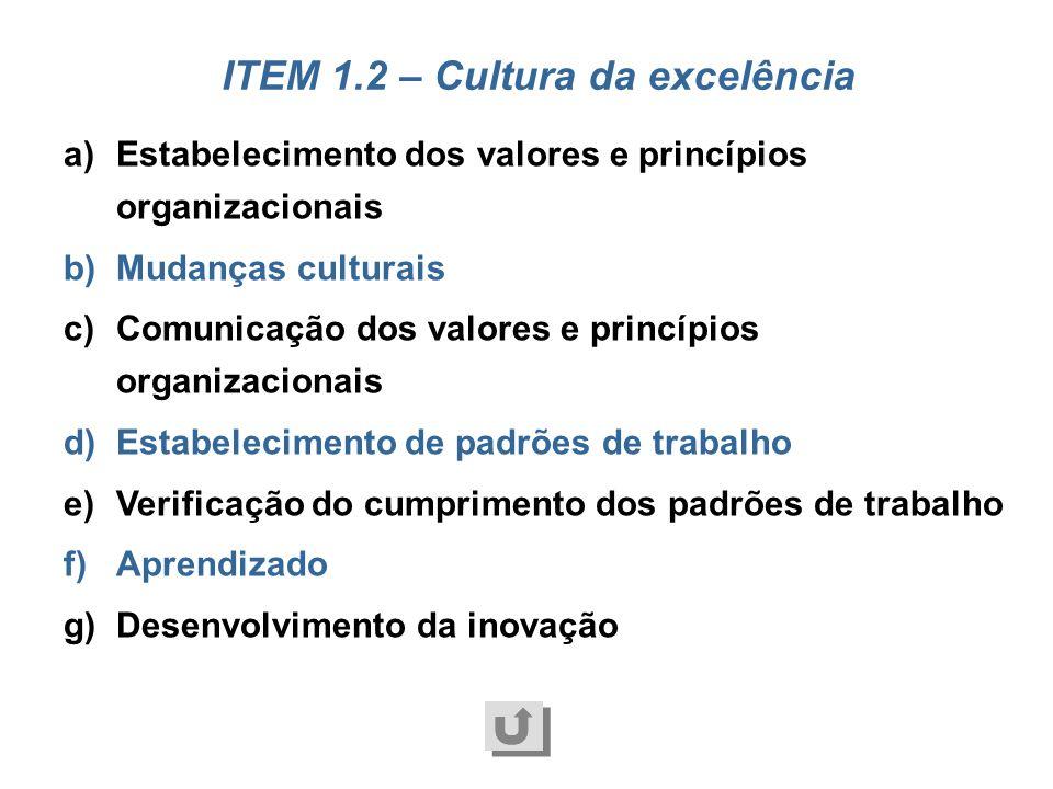 a)Exercício da liderança b)Interação com as partes interessadas c)Governança d)Gestão dos riscos empresariais e)Tomada, comunicação e implementação de