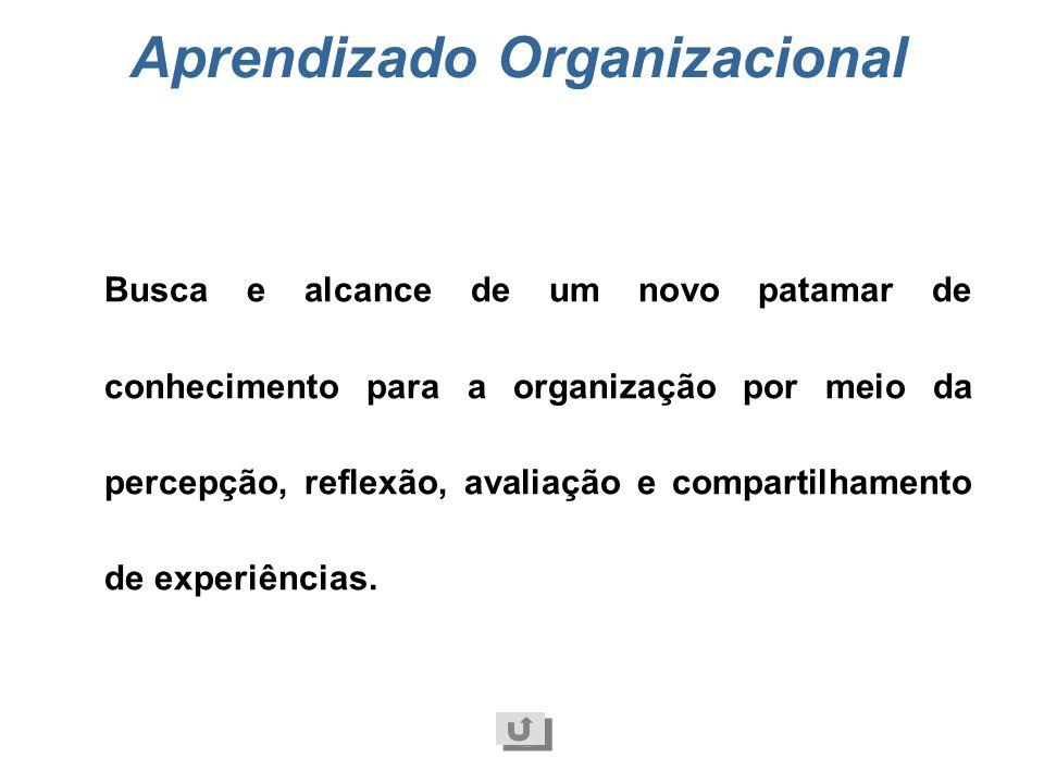 Padrão de trabalho Regras de funcionamento das práticas de gestão. Podem ser expressas na forma de procedimentos, rotinas de trabalho, normas administ