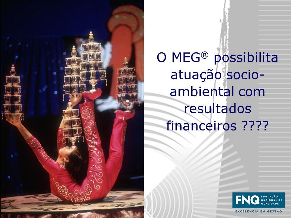 17 O MEG ® possibilita atuação socio- ambiental com resultados financeiros ????