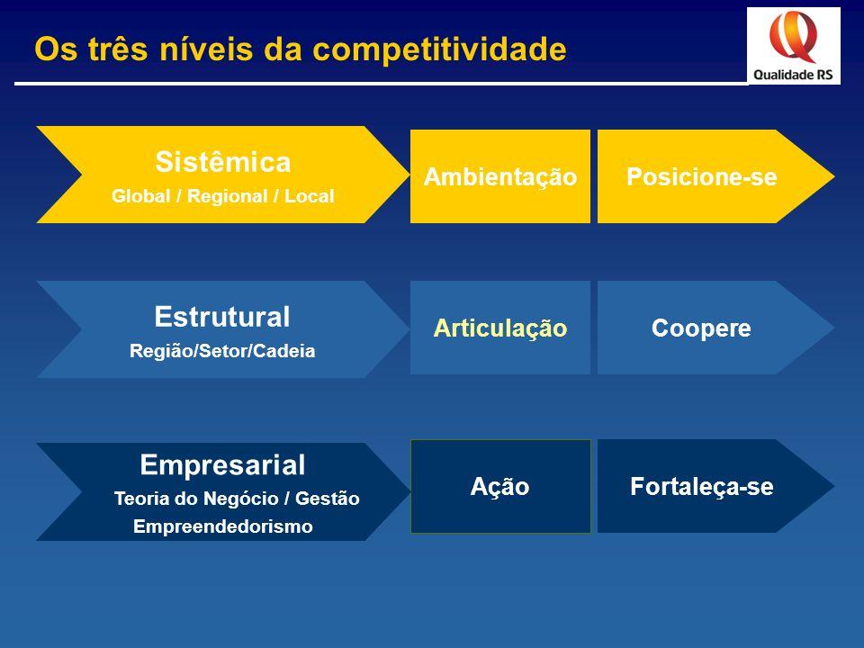 Posicione-se Coopere Fortaleça-se Ambientação Articulação Ação Estrutural Região/Setor/Cadeia Sistêmica Global / Regional / Local Empresarial Teoria d
