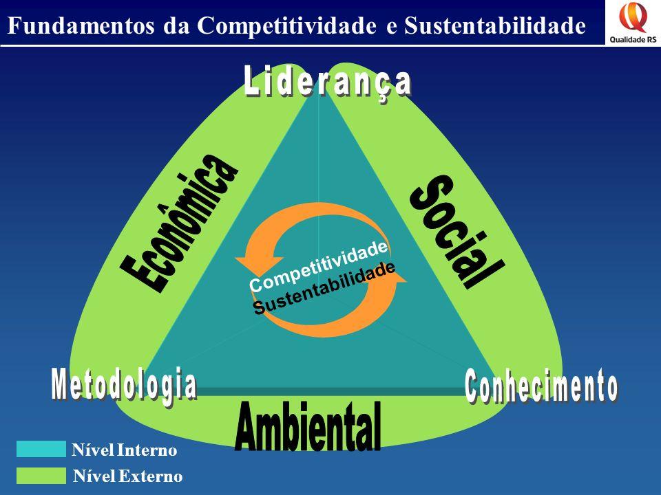 Fundamentos da Competitividade e Sustentabilidade Nível Interno Nível Externo Competitividade Sustentabilidade
