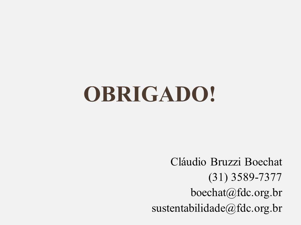 OBRIGADO! Cláudio Bruzzi Boechat (31) 3589-7377 boechat@fdc.org.br sustentabilidade@fdc.org.br