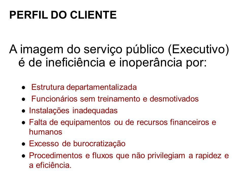 PERFIL DO CLIENTE A imagem do serviço público (Executivo) é de ineficiência e inoperância por: Estrutura departamentalizada Funcionários sem treinamen