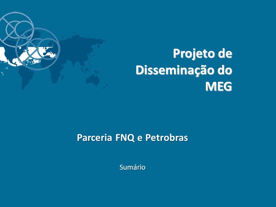 Projeto de Disseminação do MEG Parceria FNQ e Petrobras Sumário