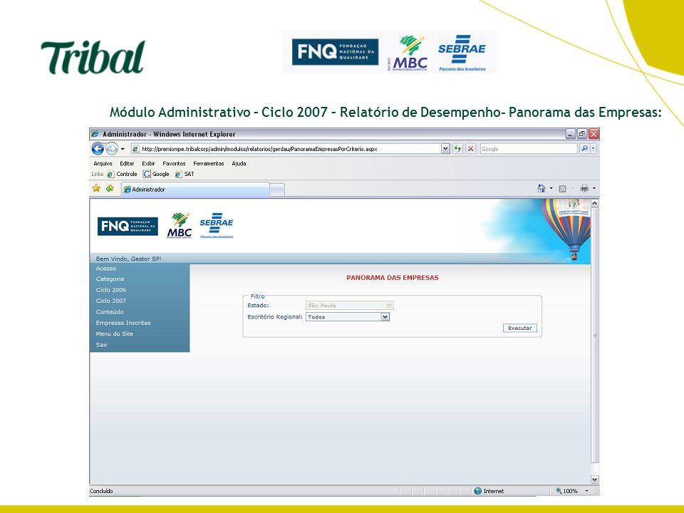 Módulo Administrativo – Ciclo 2007 – Relatório de Desempenho- Panorama das Empresas: