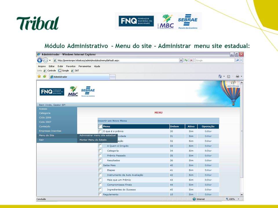 Módulo Administrativo – Menu do site – Administrar menu site estadual: