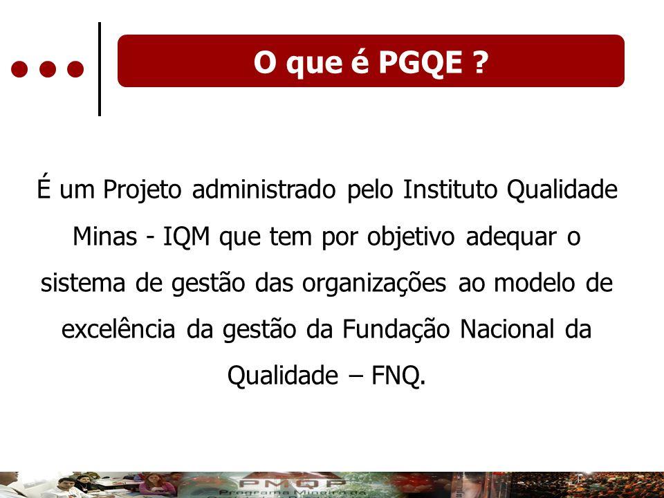 O que é PGQE ? É um Projeto administrado pelo Instituto Qualidade Minas - IQM que tem por objetivo adequar o sistema de gestão das organizações ao mod