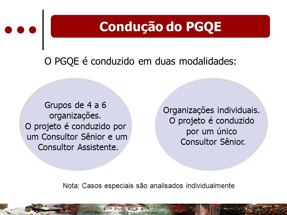 O PGQE é conduzido em duas modalidades: Grupos de 4 a 6 organizações. O projeto é conduzido por um Consultor Sênior e um Consultor Assistente. Organiz