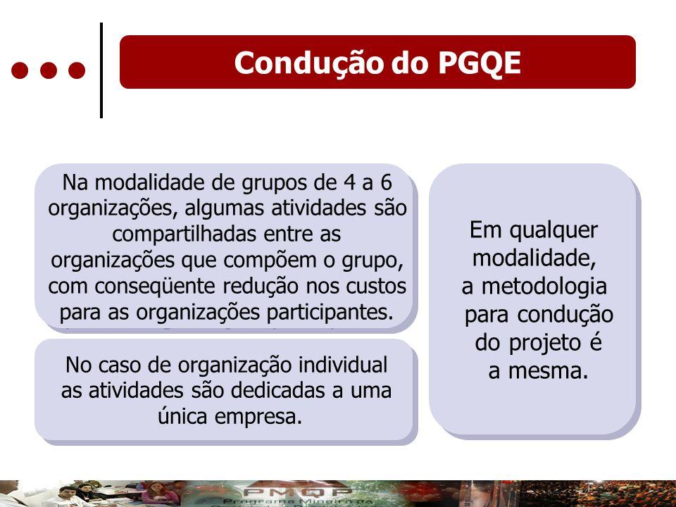 Na modalidade de grupos de 4 a 6 organizações, algumas atividades são compartilhadas entre as organizações que compõem o grupo, com conseqüente reduçã