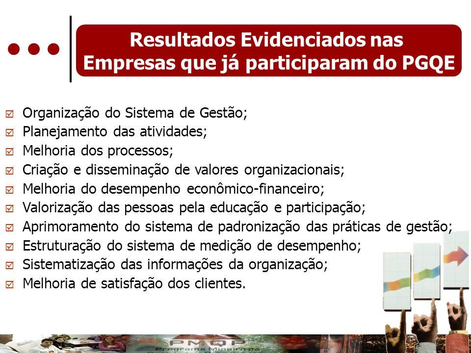 Resultados Evidenciados nas Empresas que já participaram do PGQE Organização do Sistema de Gestão; Planejamento das atividades; Melhoria dos processos