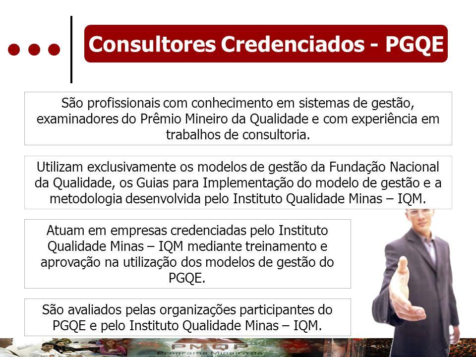 São profissionais com conhecimento em sistemas de gestão, examinadores do Prêmio Mineiro da Qualidade e com experiência em trabalhos de consultoria. U