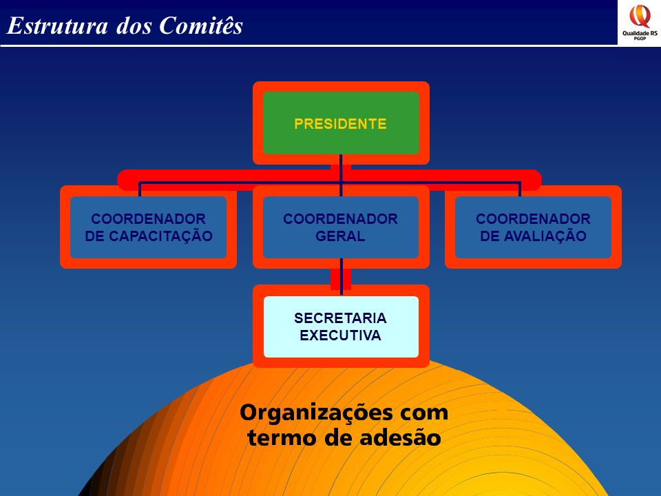 SECRETARIA EXECUTIVA COORDENADOR DE CAPACITAÇÃO COORDENADOR DE AVALIAÇÃO PRESIDENTE COORDENADOR GERAL Estrutura dos Comitês