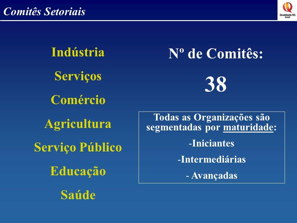Comitês Setoriais Indústria Serviços Comércio Agricultura Serviço Público Educação Saúde Nº de Comitês: 38 Todas as Organizações são segmentadas por m