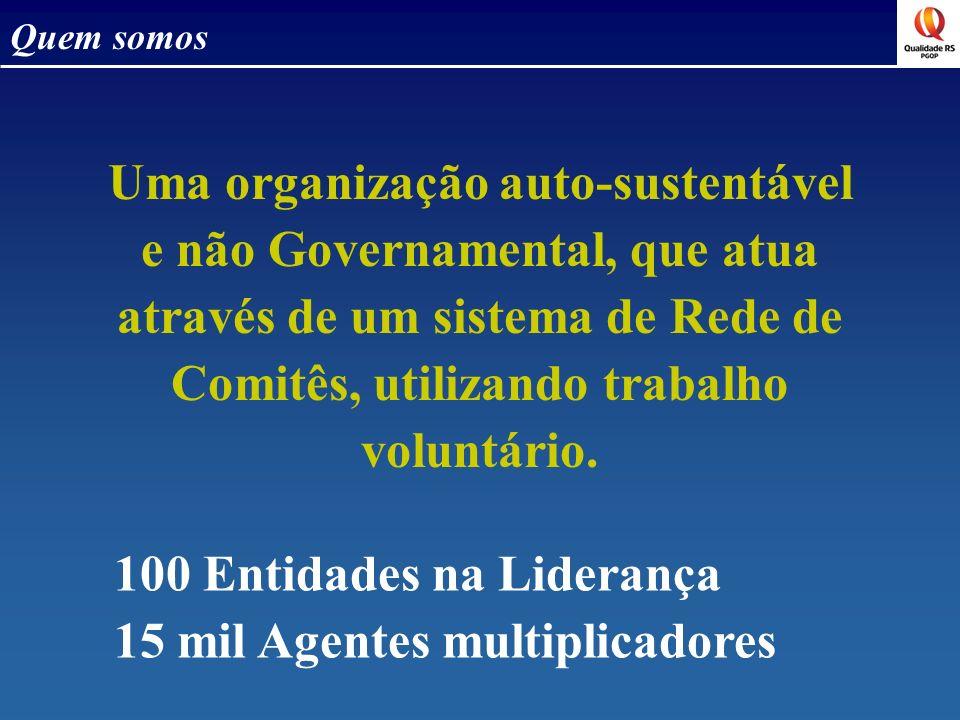 Quem somos Uma organização auto-sustentável e não Governamental, que atua através de um sistema de Rede de Comitês, utilizando trabalho voluntário. 10