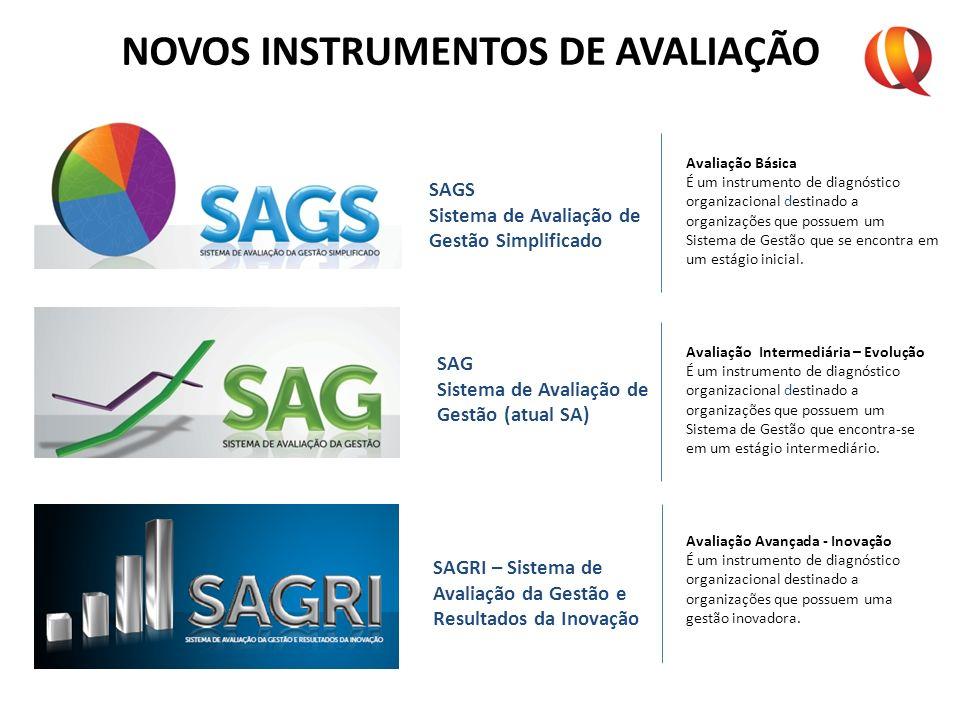 NOVOS INSTRUMENTOS DE AVALIAÇÃO Avaliação Básica É um instrumento de diagnóstico organizacional destinado a organizações que possuem um Sistema de Ges