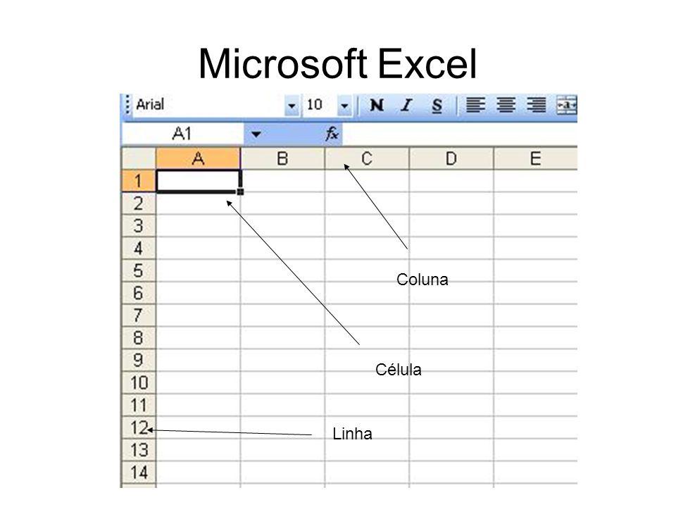 Microsoft Excel Movimentação Seleção de Célular / Colunas e Linhas Edição de Célular (F2) CTRL e SHIFT