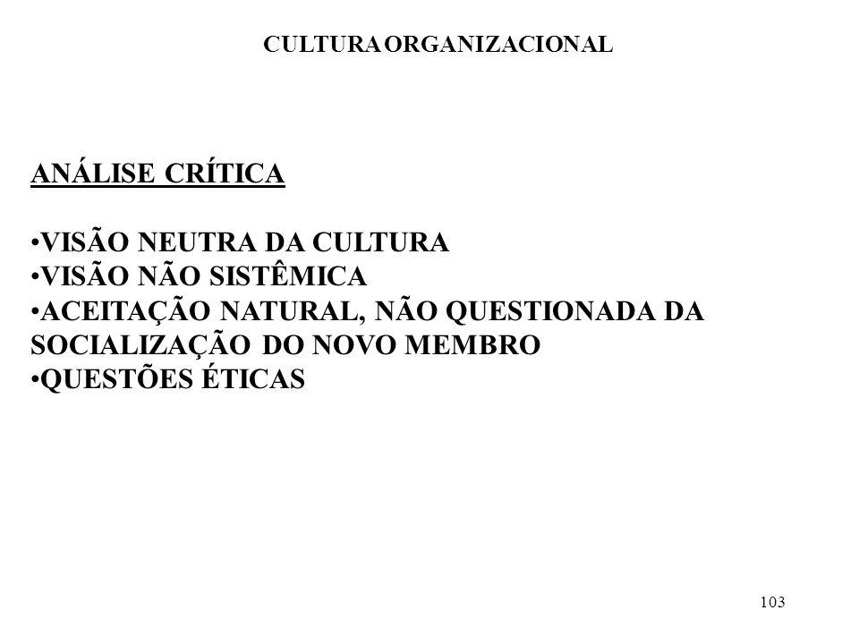 103 CULTURA ORGANIZACIONAL ANÁLISE CRÍTICA VISÃO NEUTRA DA CULTURA VISÃO NÃO SISTÊMICA ACEITAÇÃO NATURAL, NÃO QUESTIONADA DA SOCIALIZAÇÃO DO NOVO MEMB