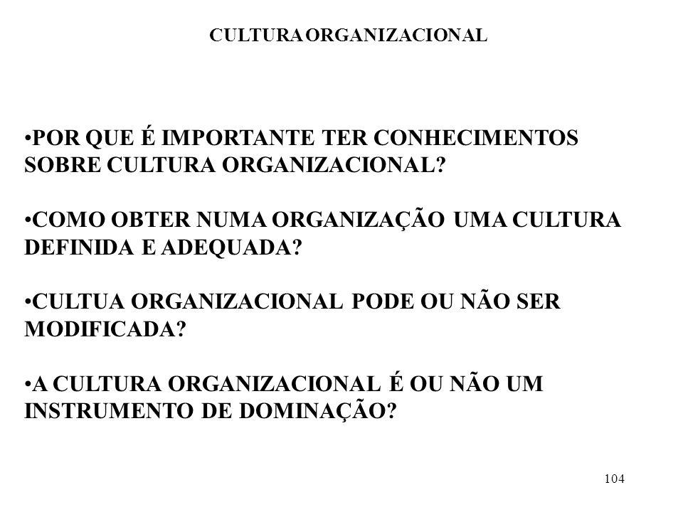 104 CULTURA ORGANIZACIONAL POR QUE É IMPORTANTE TER CONHECIMENTOS SOBRE CULTURA ORGANIZACIONAL? COMO OBTER NUMA ORGANIZAÇÃO UMA CULTURA DEFINIDA E ADE