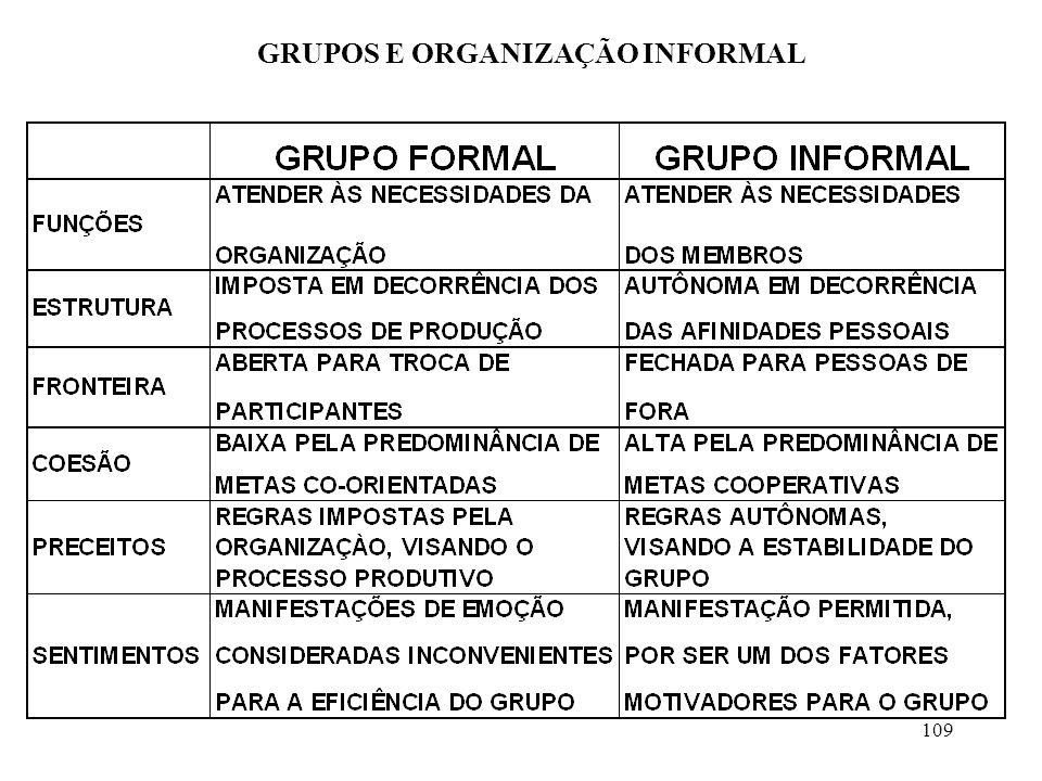 109 GRUPOS E ORGANIZAÇÃO INFORMAL