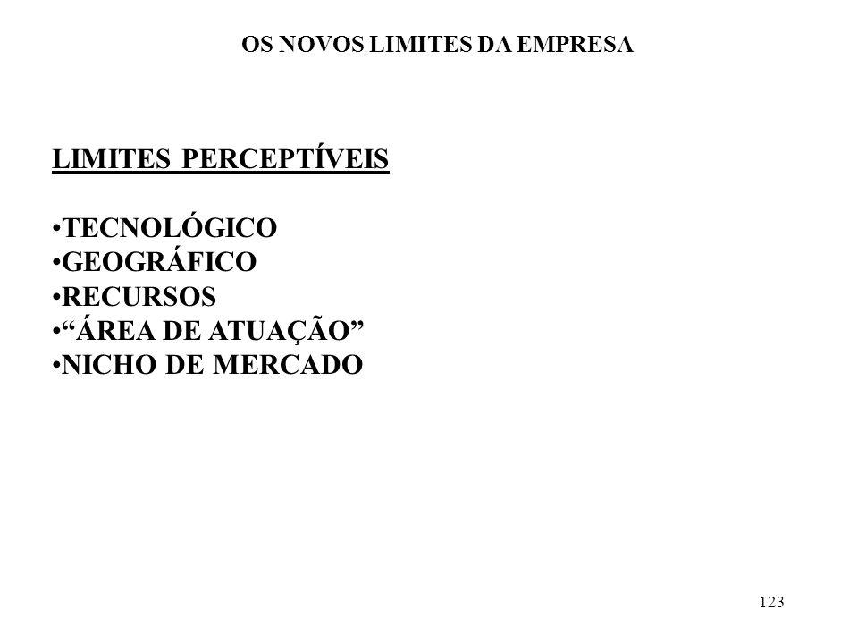123 OS NOVOS LIMITES DA EMPRESA LIMITES PERCEPTÍVEIS TECNOLÓGICO GEOGRÁFICO RECURSOS ÁREA DE ATUAÇÃO NICHO DE MERCADO