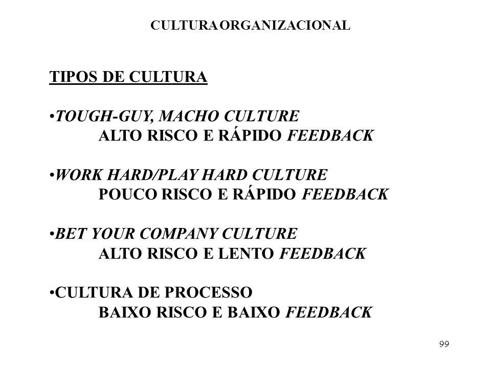 99 CULTURA ORGANIZACIONAL TIPOS DE CULTURA TOUGH-GUY, MACHO CULTURE ALTO RISCO E RÁPIDO FEEDBACK WORK HARD/PLAY HARD CULTURE POUCO RISCO E RÁPIDO FEED