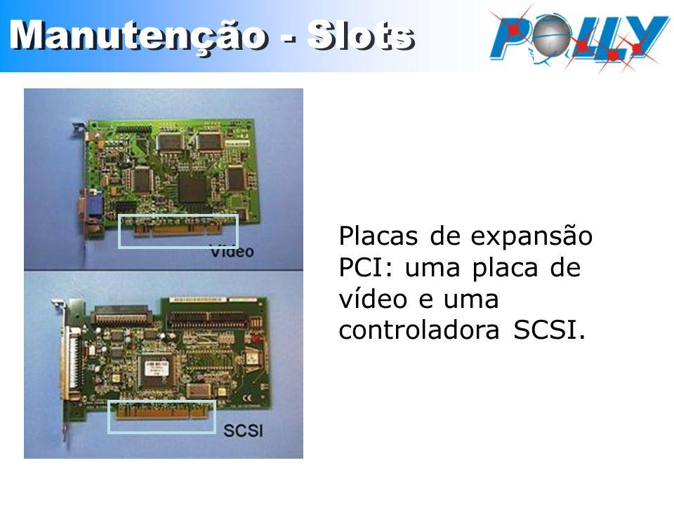 Placas de expansão PCI: uma placa de vídeo e uma controladora SCSI.
