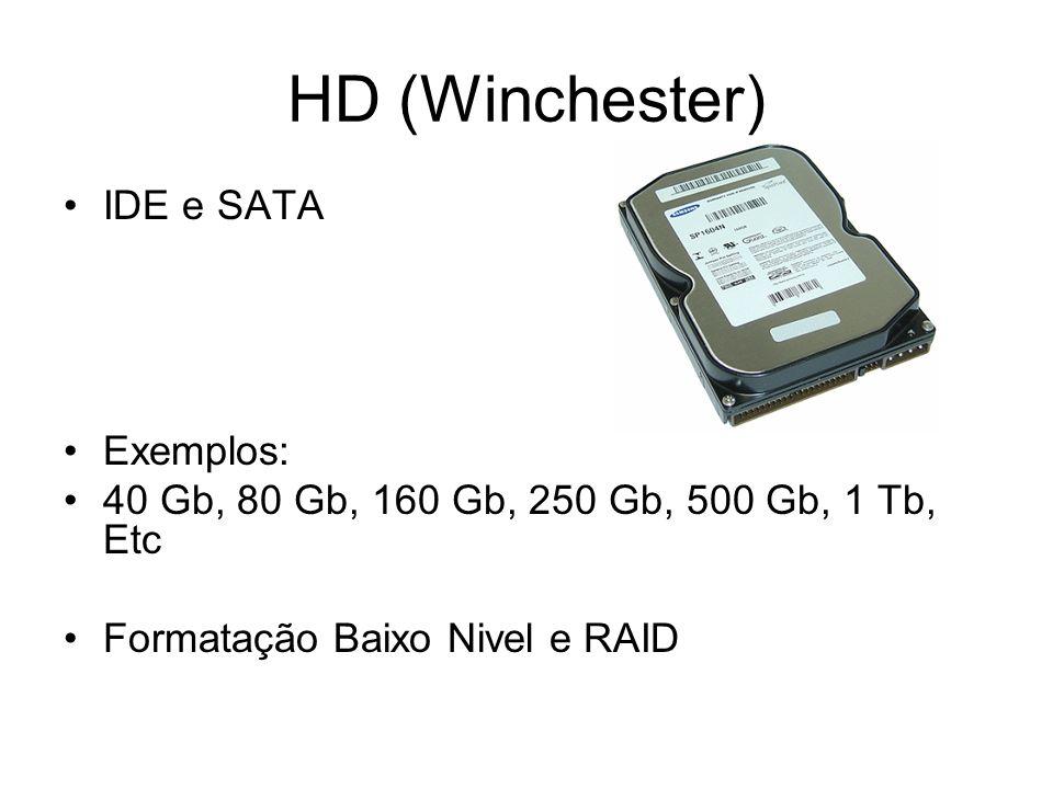 HD (Winchester) IDE e SATA Exemplos: 40 Gb, 80 Gb, 160 Gb, 250 Gb, 500 Gb, 1 Tb, Etc Formatação Baixo Nivel e RAID