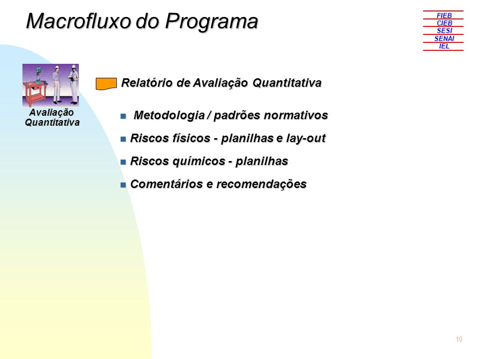 10 FIEBCIEBSESISENAIIEL n Metodologia / padrões normativos n Riscos físicos - planilhas e lay-out n Riscos químicos - planilhas n Comentários e recome