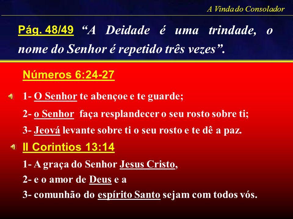 Pág. 48/49 A Vinda do Consolador Números 6:24-27 1- O Senhor te abençoe e te guarde; 2- o Senhor faça resplandecer o seu rosto sobre ti; 3- Jeová leva