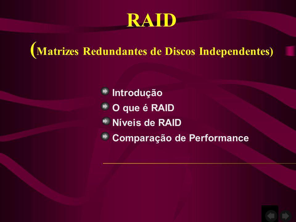 Introdução O que é RAID Comparação de Performance RAID ( Matrizes Redundantes de Discos Independentes) Níveis de RAID