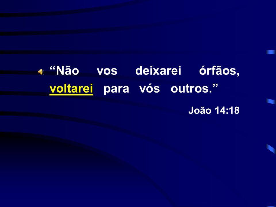 Não vos deixarei órfãos, voltarei para vós outros. João 14:18