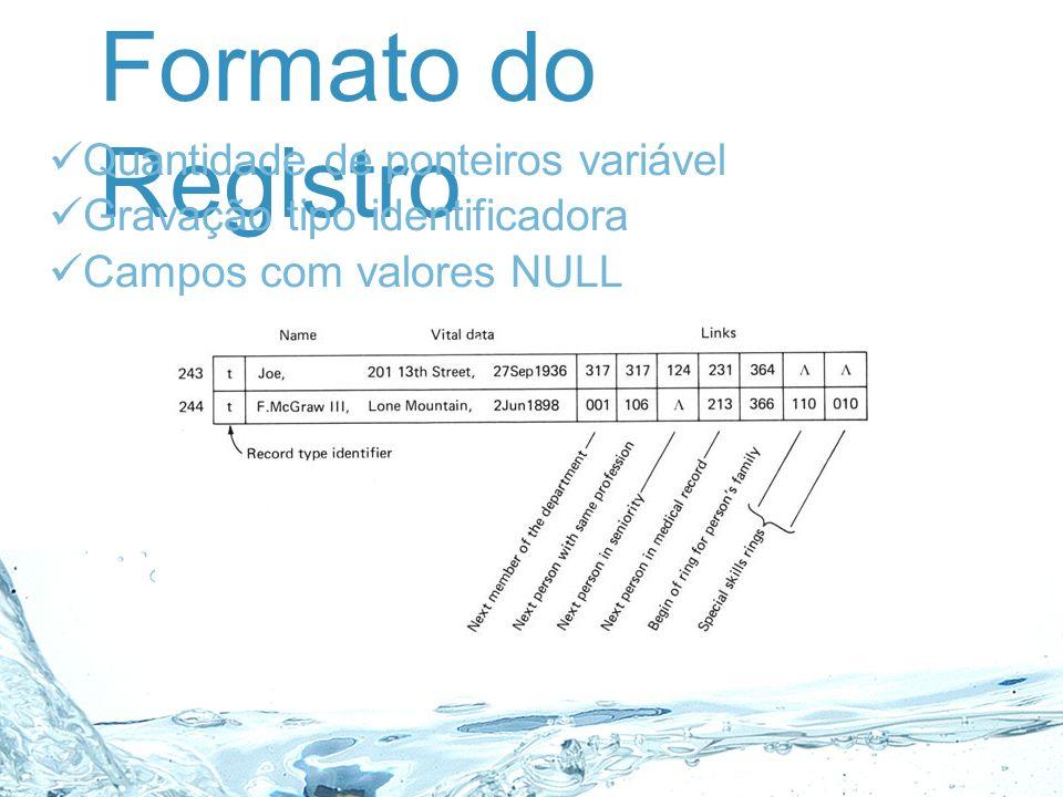 Formato do Registro Quantidade de ponteiros variável Gravação tipo identificadora Campos com valores NULL