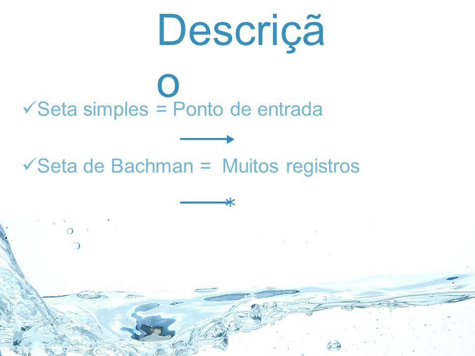 Descriçã o Seta simples = Ponto de entrada Seta de Bachman = Muitos registros